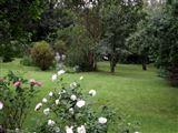 Fern Glen Guest Cottages