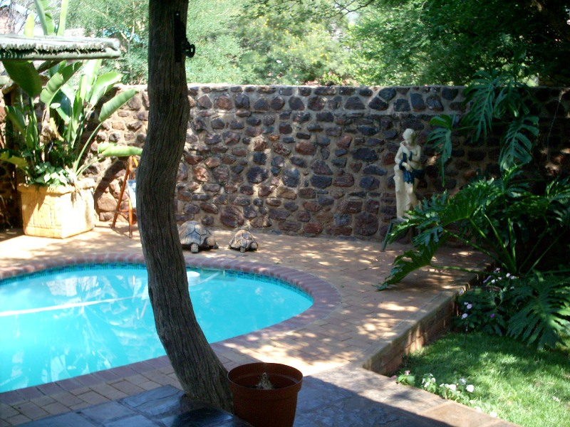 pet friendly Thabazimbi
