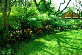 Clifton Corner Guesthouse - SPID:868866