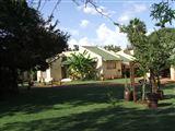 B&B871834 - Bushveld