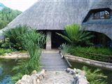 B&B877157 - Limpopo Province