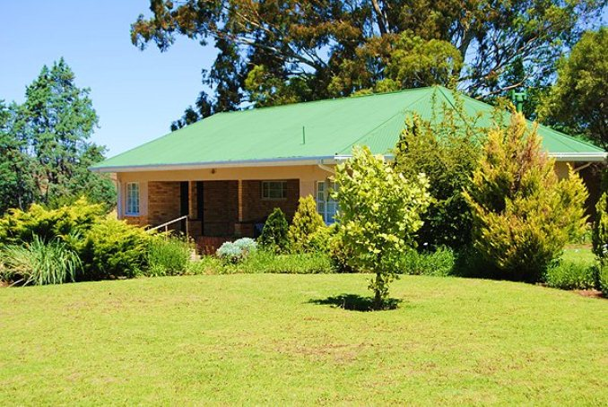 pet friendly Springfontein