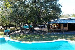 Thakadu Bush Camp image9