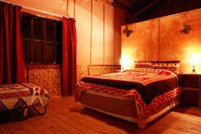 Thakadu Bush Camp image3