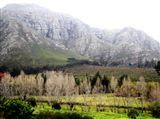 Paradyskloof Guest House