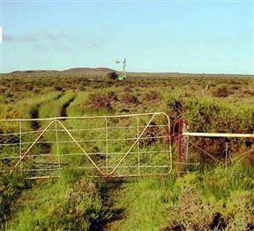 Kweekwa Guest Farm - SPID:897052