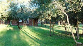 Pigmy Lodge - SPID:897860