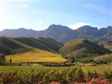B&B899868 - Cape Peninsula