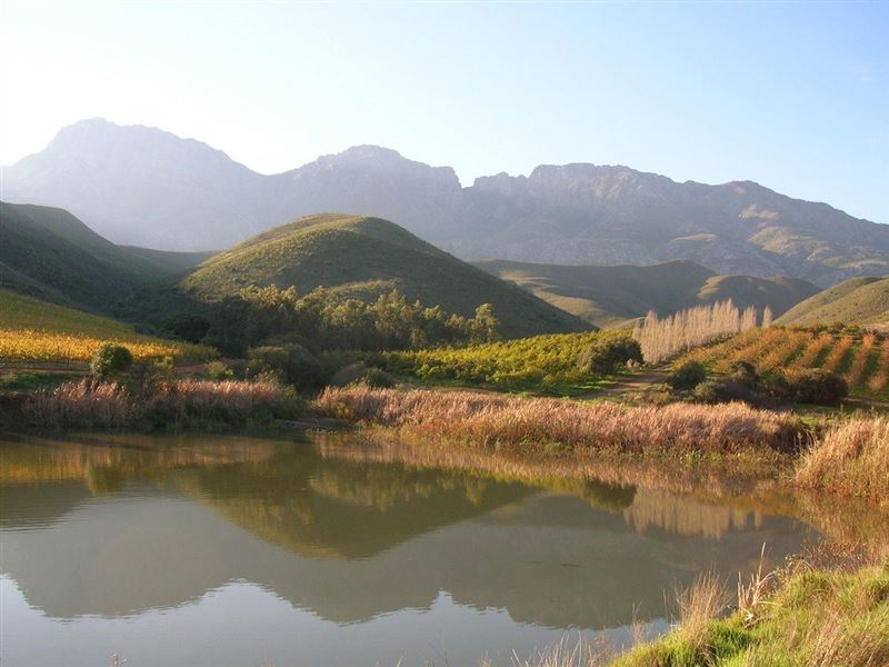 Olyfenbosch Cottages Robertson Your Cape Town South Africa