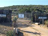 B&B911373 - South Africa