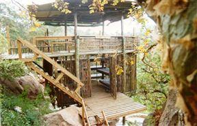 Thabaphaswa Mountain Sanctuary - SPID:919774