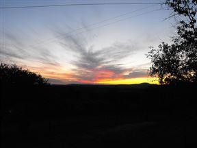 Bushbuck Hills Eco Farm - SPID:928411