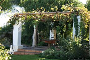 African Vineyard Guest House