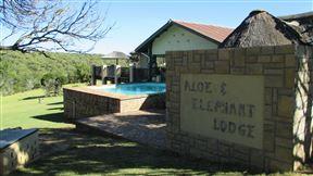 Aloe and Elephant Lodge Photo