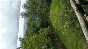 Monyane Lodge - SPID:959223