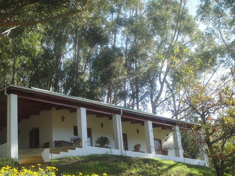 L'Olivier Wine & Olive Estate Guest House - SPID:9695