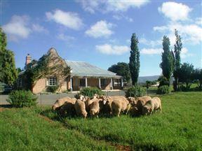 Wellwood Farm - Trymore Cottage Photo