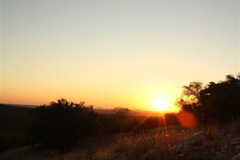 Kieuw Game Ranch - SPID:987319