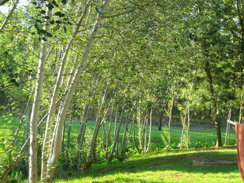 Khomeesdrif Camping Site - SPID:997460